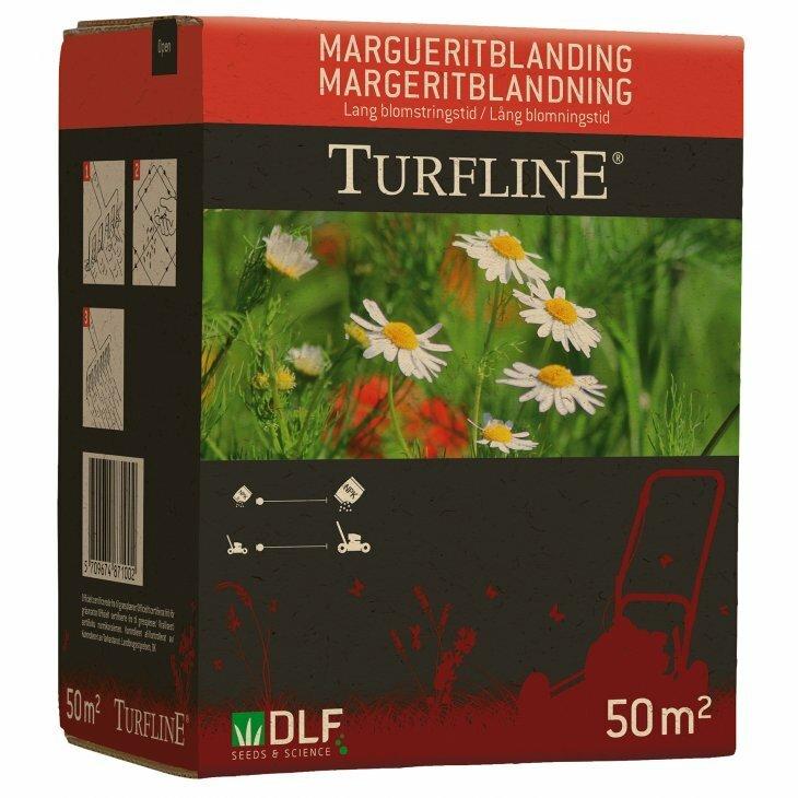 Turfline Margueritblanding til 50 m2