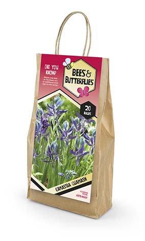 Bees & Butterflies Camassia Quamash - Prærielilje 20 løg