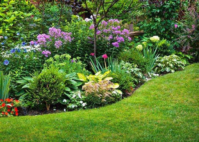 Have med smukt staudebed