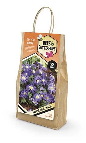 Bees & Butterflies Anemone Blue Shades - Balkananemone 25 løg