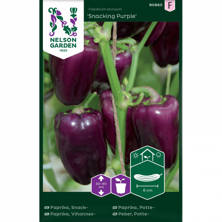 Peber, Sød, Potte-, Snacking Purple