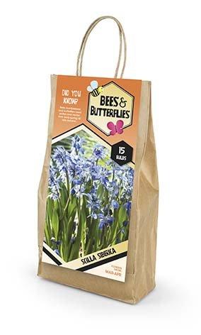 Bees & Butterflies Scilla Sibirica - Russisk Scilla 15 løg