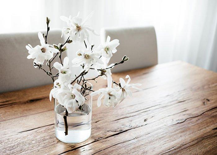 Magnoliagrene i vase
