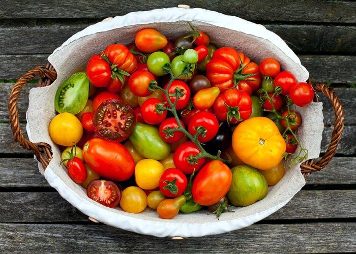 Kurv med forskellige tomater