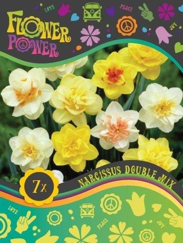 Flower Power Påskelilje double mix 10 løg