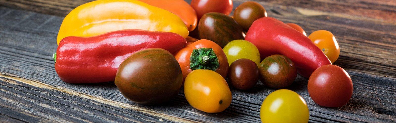 Forskellige tomatsorter