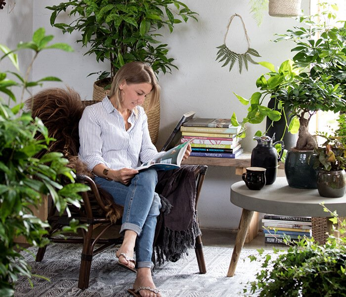 Dagligstue med grønne stueplanter