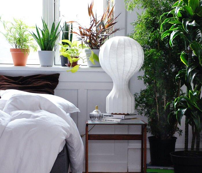 Soveværelse med grønne stueplanter
