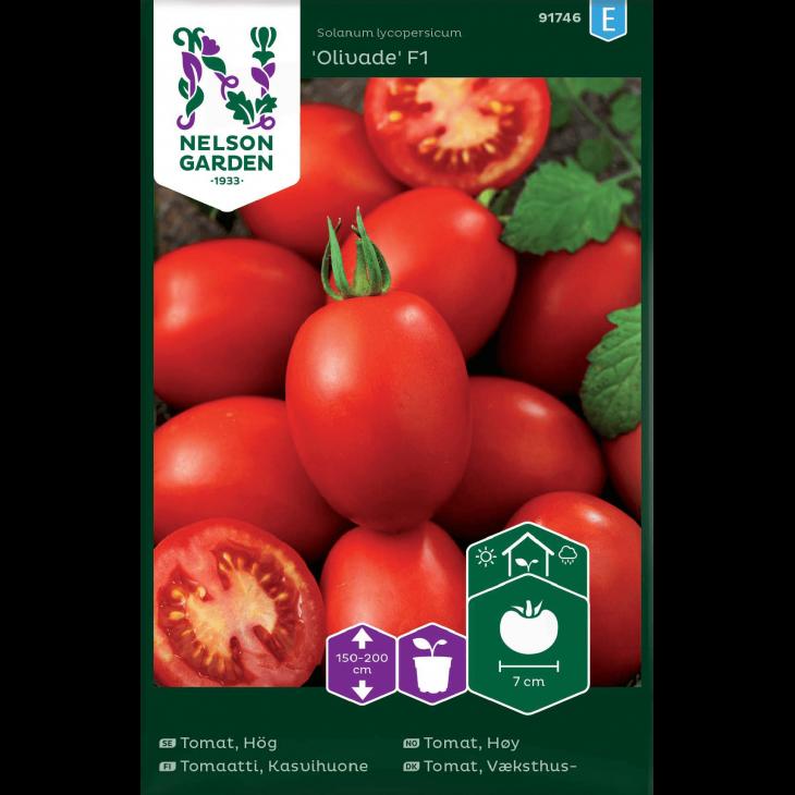 Tomat, Væksthus-, Olivade , aflang