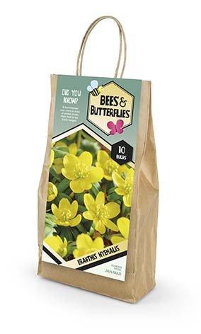 Bees & Butterflies Eranthis Hyemalis - Erantis 10 løg