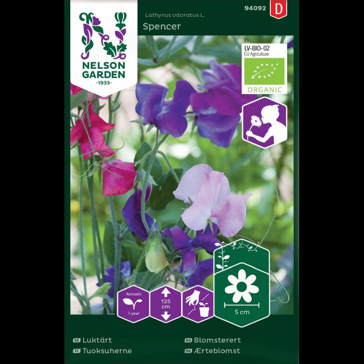 Ærteblomst, Spencer, bl. farver, Organic