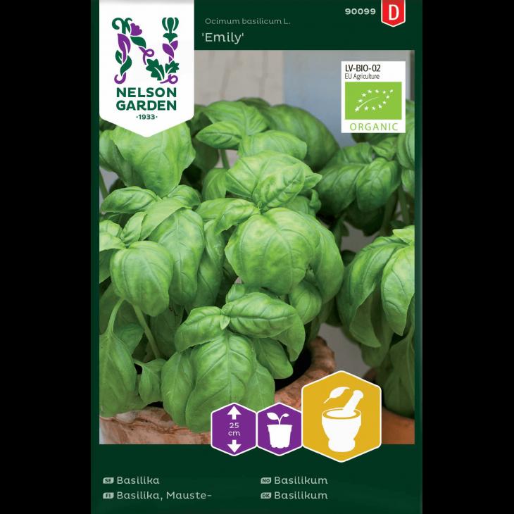 Basilikum, glatbladet, Emily, Organic
