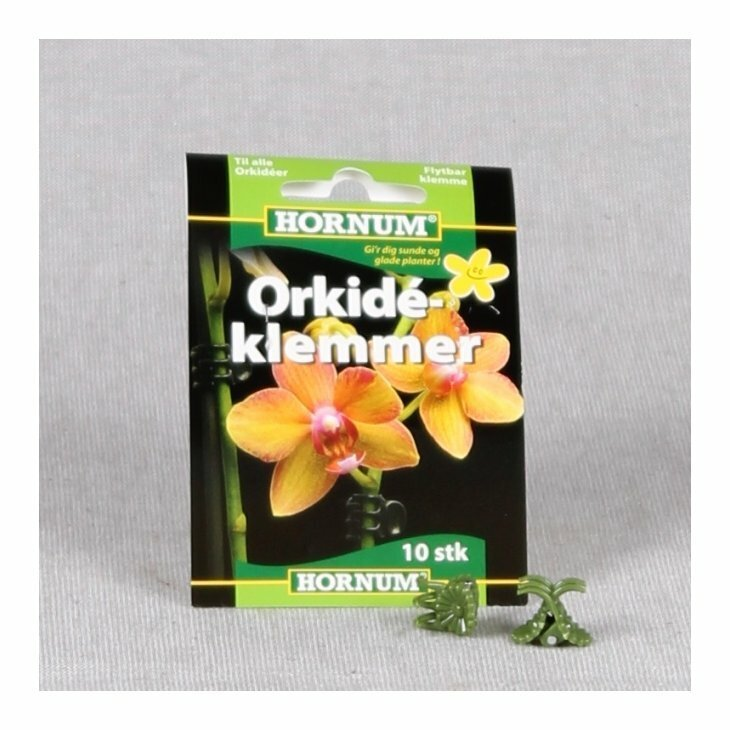 Orkidéklemmer 10 stk.