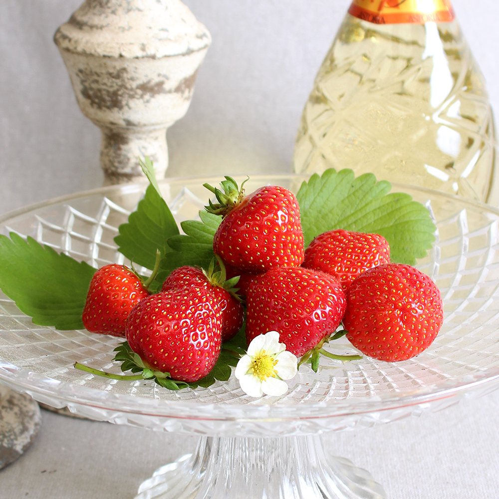 Jordbærplanter - Fragaria 'Sonata' i 9 cm potte