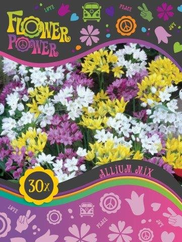 Flower Power Allium mix 50 løg
