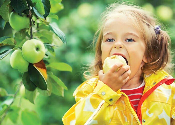 Pige spiser æble fra æbletræ