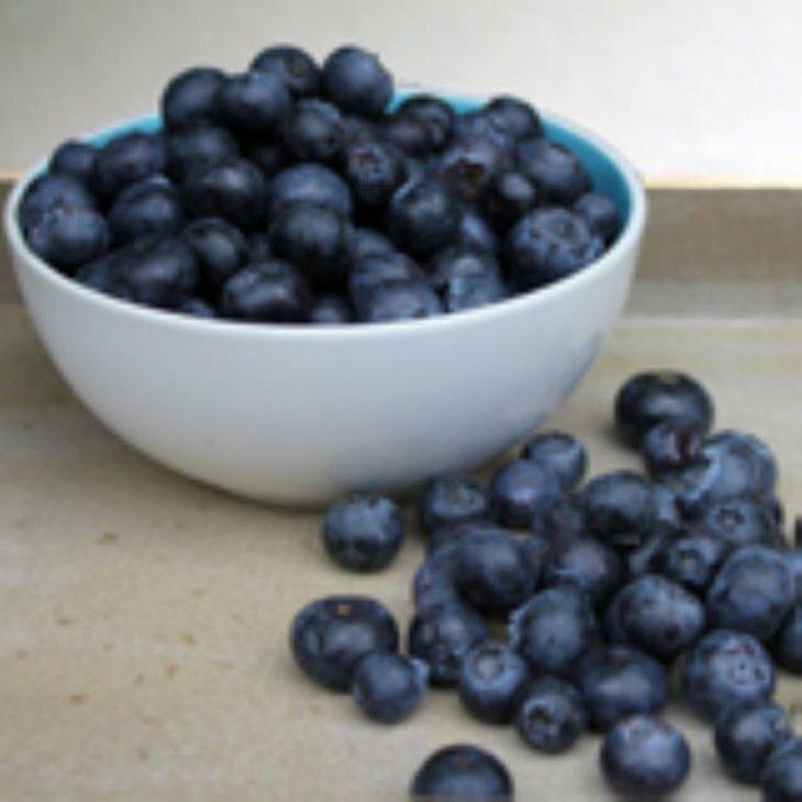 Blåbærbusk europæiske - Vaccinium myrtillus i 10 cm potte