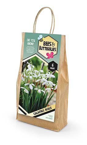 Bees & Butterflies Galanthus Nivalis - Vintergæk 6 løg